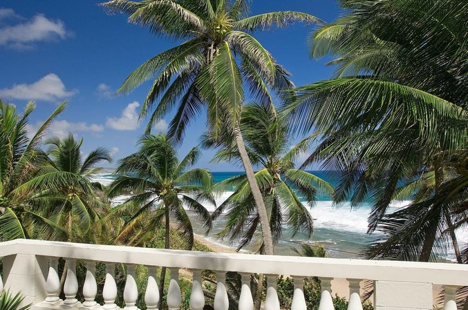 View of palm trees and beach from the Round House Restaurant in Barbados
