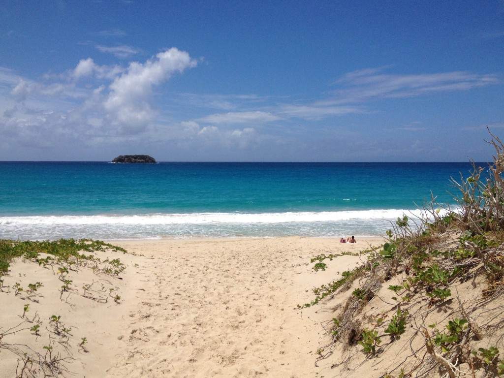 St Barts. Saline beach is sandy and the perfect spot to relax in the sun