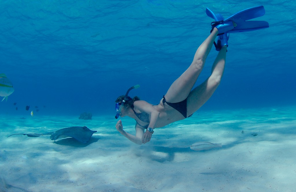 Swimming with Stingrays at Stingray City