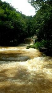 The rapids at Ys Falls in Jamaica