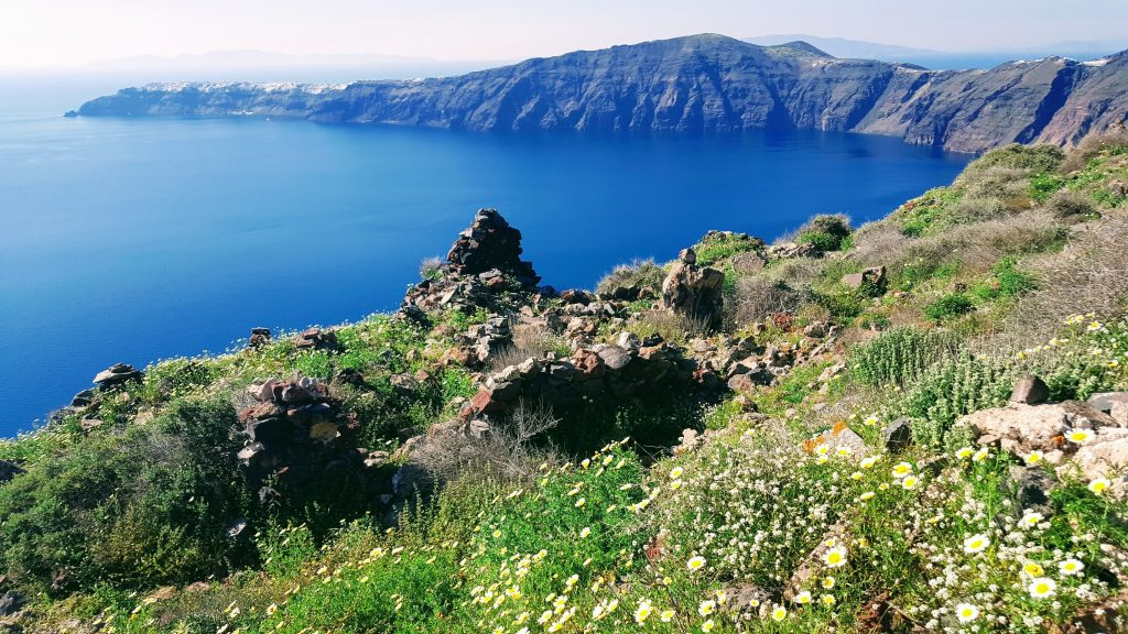 Sunlit view of the Santorini caldera overgrown ruins in the foreground