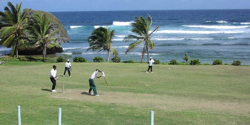 A game of cricket being played on a green next to waves crashing on the shore.