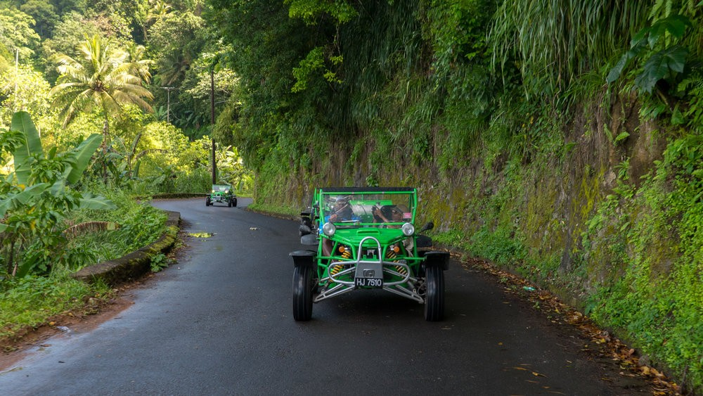 Snazzy green buggies wind through the jungle making it one of the top things to do in st lucia