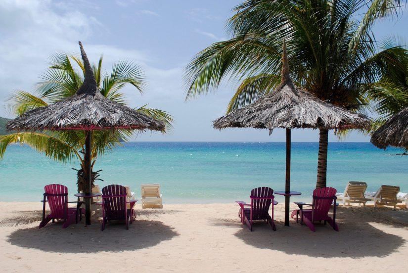 idyllic beach setting, beach chairs under a palm umbrella - bliss