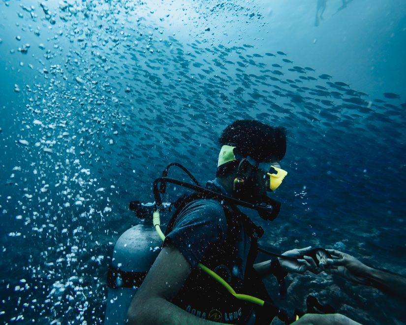 Long island points of interest also delves into the waters, an experience that is once in a lifetime