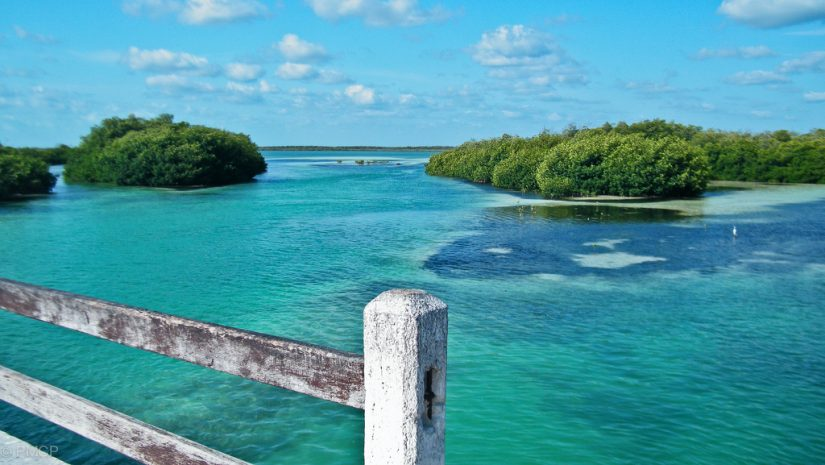 Sian Ka'an, a serene Nature reserve, is one of the Best things to do in riviera maya