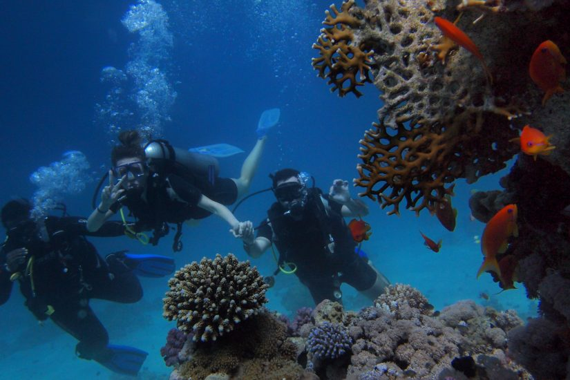 Indulge in some incredible Grand Cayman diving in the Caribbean Sea