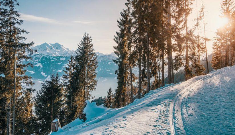 january vacation spots