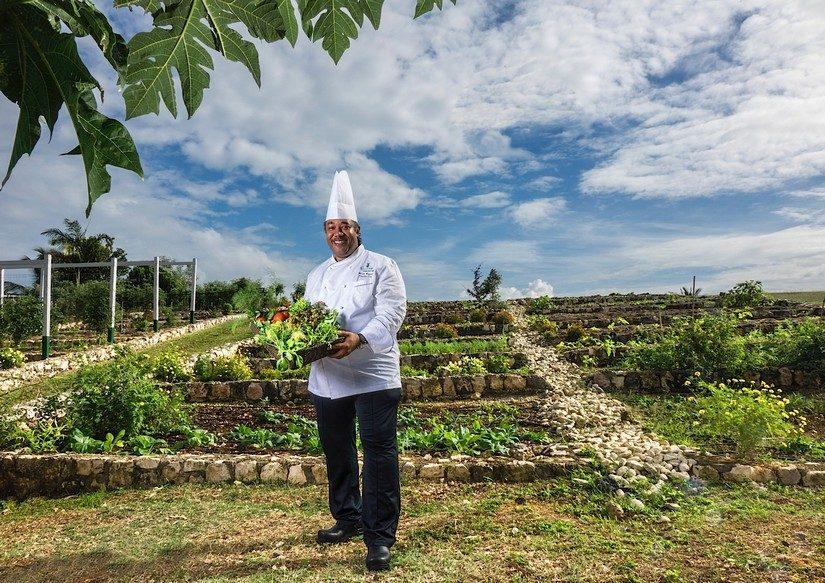 Chef In Organic Garden