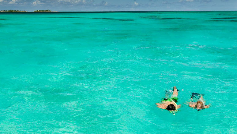 Things to do in the Bahamas