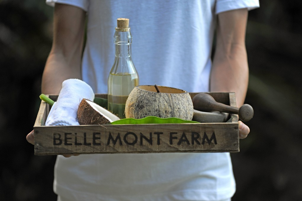Welcome to Belle Mont Farm