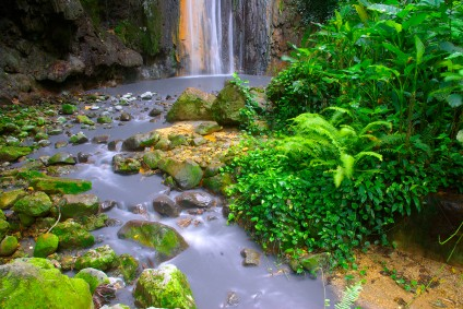 Much of the jungle in St Lucia is unspoiled and a wondrous place in which to go hiking