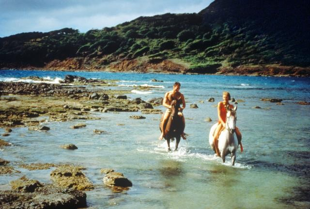 Riding on the beach - Horse Riding in St Lucia