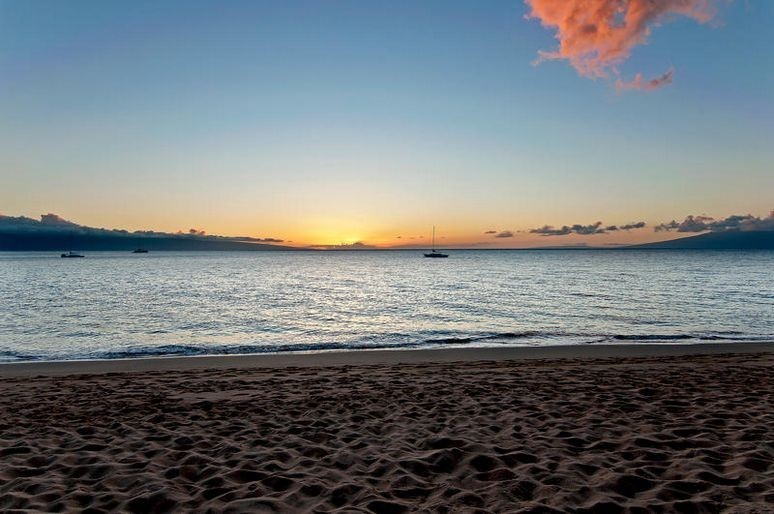 View of the blue horizon from a beach in maui