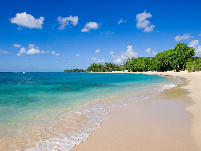 Beach, azure blue ocean and palm trees in bright sunlight.  Gibbs Beach in Barbados