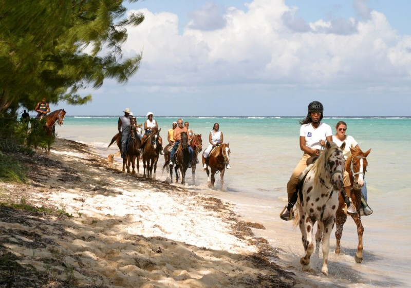 Horse riding on the beach in the cayman islands