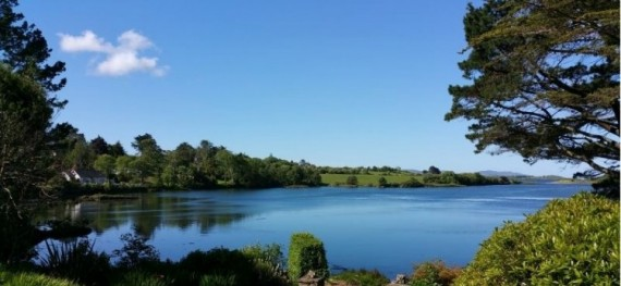 Westerly on Bantry Bay West Cork