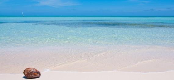 Caribbean Club - Beachfront - 4 Bedrooms
